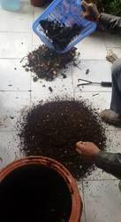 Bio Bin Composting