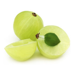 Emblica Officinalis Amla Extract
