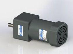 60 Watts AC Motor