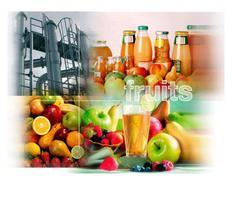 Fruit Juice Processing Plant