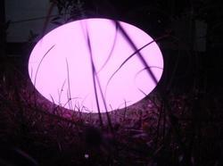 LED Oval Ball Light