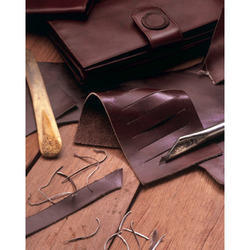 Leather Enzymes for Leather Industry