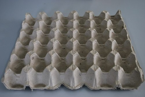 Egg Tray - Paper Pulp Egg Tray 20 Lbs Manufacturer from Hyderabad