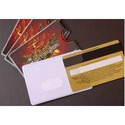 Pvc Envelope Printing Services