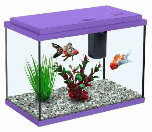 Aquarium Fish Tank At Rs 3600 Piece S Fish Tanks Id 12494172788
