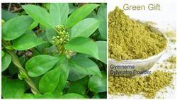 Pure Gymnema Sylvestre Powder