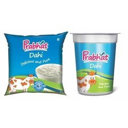 Prabhat Curd for Office Pantry