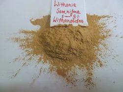 Withania  Somnifera - Ashwagandha