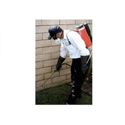 House Hold Pest Control Services