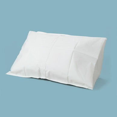 Disposable Pillow Covers Exotic Multiproducts Manufacturer In Beauteous Disposable Pillow Covers