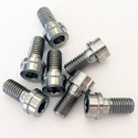 Titanium Screw