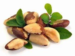 Brazil Nuts Sacks, Packaging: 20 kg