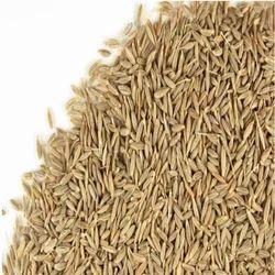Pesticide Free Cumin Seed