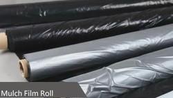 Mulching Film Rolls