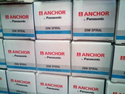 Anchor CFL Light