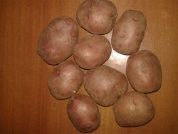 L R - Red Potato