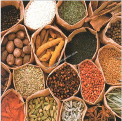 Spice Herbs - Wholesaler & Wholesale Dealers in India