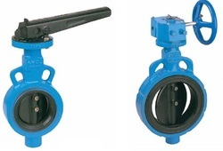 CI Butterfly Valve PN 10 with SS 304 Disc LO - 200 mm