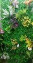 Hyperboles Artificial Vertical Wall Mats (for Vertical Garden)