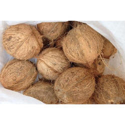 Husked Coconut in Vellore - Latest Price & Mandi Rates from Dealers
