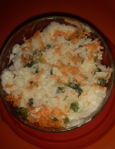 Curd rice for dogs at rs 50 packet dog food id 18955522712 curd rice for dogs forumfinder Gallery