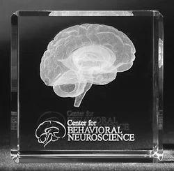 3D Laser Engraving Brain Crystal Cube