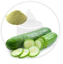Ecooverseas Cucumber Powder, Pack Size: 25 KGS