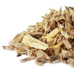 Organic Angelica Root Oil