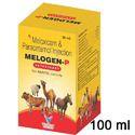 Meloxicam Paracetamol Injection