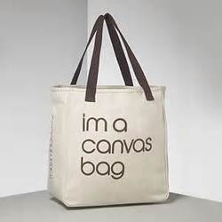 Canvas Cloth Shopping Bags at Rs 30 /piece | Canvas Cotton Cloth ...
