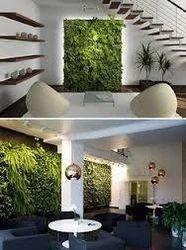 Vertical Garden Designing Service
