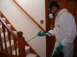 House Pest Management Services
