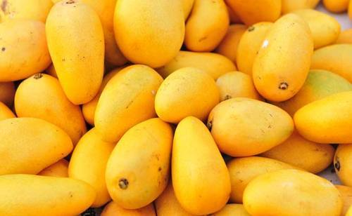 Image result for Mangoes