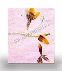 Pressed flower paper haath se bana fulon wala kagaj pressed flower paper mightylinksfo