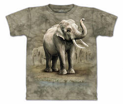 Digital T-Shirt Printing Service