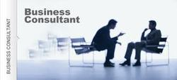 Business Finance Consultancy