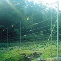 Solar Farm Fence