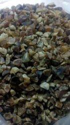 Salora Seeds