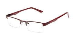 Trandy Optical Frames