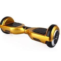 Mini Segway Manufacturers Suppliers Traders