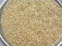 Organic Kambu Millet, Packaging Type: Polyproplene Bag, Packaging Size: 25 To 50 Kg