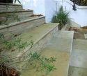 Fossil Bullnosed Steps