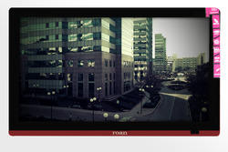 24 Inch Roan Red Color Panel LED TV