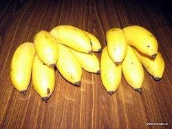 Banana Seeds