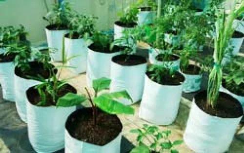 Grow bag ldpe terrace garden grow bags manufacturer from for Terrace vegetable garden kerala