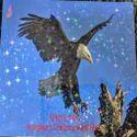 Spick Global Sparkles Star Holographic Cold Lamination Films