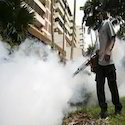 Fogging Insect Control Services