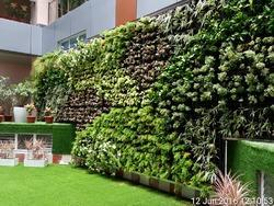 Big Bucket Type Vertical Garden