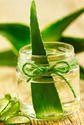 Aloevera Oily