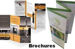 Printed Folders Printing Services, Dimension / Size: Custom